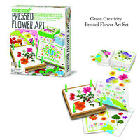 4M Green Creativity Creative Childrens Kids Pressed Flowers Leaves Art Cards Set