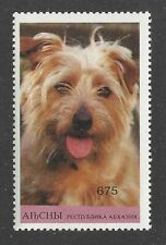 Rare Art Head Study Postage Stamp Pyrenean Shepherd Dog Abkhasia Mnh