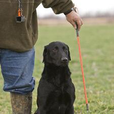 Avery Sporting Dog Greenhead Gear Trainer's Heeling Stick Blaze Orange Bumper