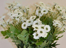 Gisela Graham Faux Fresh Daisy Flowers Bunch