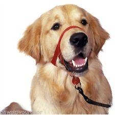 Halti head collar red size 3 dobermann, gsd, labrador