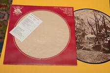 LP PICTURE DISC COUNTRY ORIG ITALY PRESS 1980 NM ! MAI SUONATO