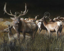 WILDLIFE ART PRINT - The Gathering by Kevin Daniel Elk Poster 37x30