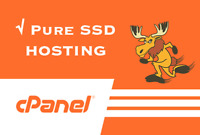 Cloud Business cPanel Web Hosting Fast SSD with Softaculous For 1 Year! Free SSL