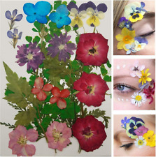 Face Flowers - Real Dried and Pressed Flowers for Face - Festival Makeup Rave Ac