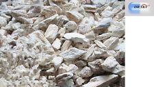 Dr T&t 100g largo Gu (Ossa Draconis) drgonsbones Drgon 'hueso, fossilizid