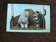 VintageTuck's Postcard, Cats on Seat, Looking for Birds