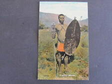A Native Warrior Capetown South Africa Postcard