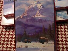 Leanin Tree Christmas Card Set Beautiful Winter Buffalo Scene 10 Pk New