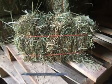 1st cut Timothy hay: Rabbit, Guinea Pig, Chinchilla, etc (discounts avail)