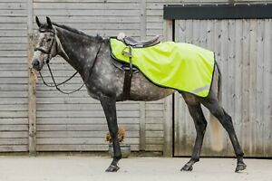 High Visibility Horse Exercise Sheet Waterproof Lightweight All Colours & Sizes