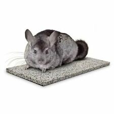 Chinchillas Chin Chiller - Super Pet