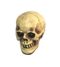 Piccole dimensioni REPLICA TESCHIO umano realistico Gotica Halloween Decorazione Ornamento
