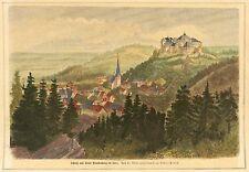 BLANKENBURG (HARZ) - GESAMTANSICHT - Albert Probst - kolorierter Holzstich 1878