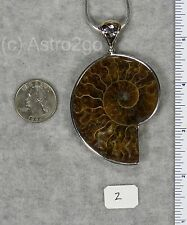 AMMONITE PENDANTS $98 Sterling Silver Fossil Jewelry by STARBORN CREATIONS NEW!