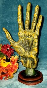 The Alchemy Guild Hand Palmistry Mummified Halloween Decor Gothic Palm Reading
