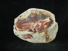 Achat  Thüringen 8,4x6,6cm Anschliff-Mineralien-Anschliffe-Heilsteine-