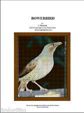 BOWER BIRD - cross stitch chart