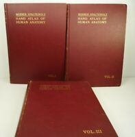 Hand-Atlas of Human Anatomy WERNER SPALTEHOLZ  7th Edition 3 Vols 1933 HC