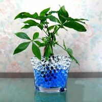 12 COLOURS 10g WEDDING HOME DECOR VASE AQUA WATER CRYSTAL SOIL BEADS GEL BALL