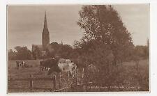 Salisbury Cathedral Judges 5340 Postcard, A969