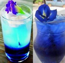 100% Natural Butterfly Pea Tea, Blue Pea Flower Tea 100g