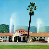 Vintage 1967 Calistoga Hot Springs Postcard Volcanic Mud Bath Mineral Water Palm