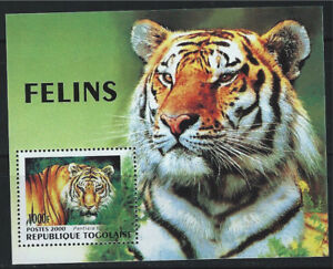 Togo SC1925 Souv.Shts The Tiger-Wild Cat  MNH 2000