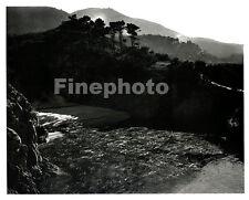 1940s Vintage California POINT LOBOS Landscape Photo Engraving By EDWARD WESTON