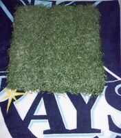 "Tampa Bay Rays Tropicana Field MLB Authenticated Field Astro Turf 12"" x 12"""