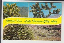 Chrome 3 View Greetings from Lake Havasu City Az Arizona H6008