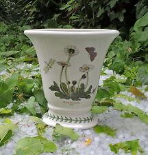 Vaso vintage ceramica Portmeirion 1972 The Royal Botanic Garden Bellis perennis