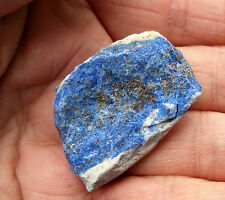LAPIS LAZULI AFGHANISTAN NATURAL ROUGH SPECIMEN 33mm to 38mm GIFT BAG & ID CARD
