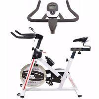 Exercise Bike Aerobic Training Studio Cycle Cardio Fitness Bicycle 13kg Flywheel