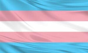 Transgender Pride Flag Monica Helms Gay Trans LGBTQ Large Polyester 5x3/150x90cm