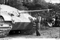 B&W WWII Photo German Tiger II Camo Pzkpfw. VI WW2 WW2 World War Two Wehrmacht