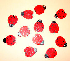 12 Wooden Lady Birds Card Topper Embellishments
