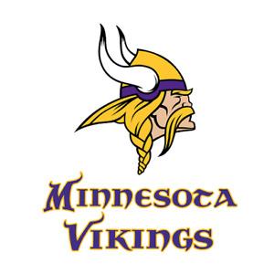NFL Minnesota Vikings Football Embroidered Hooded Sweatshirt S-5XL, LT-4XLT New