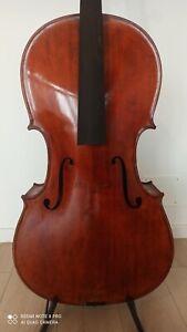 Alte Meister Cello Grosse 4/4