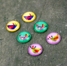 12mm Mixed Colorful Handmade Photo Glass Cabochon Bird Collage Art Gd34(5pcs)