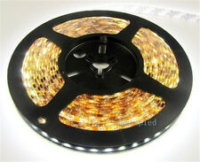 12V 5M SMD 3528 300LED Flexible Warm Cool White Fairy Strip Light Non Waterproof