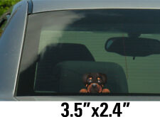 Rottweiler  Dog Stickers, Decal 001