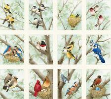 Beautiful Birds Panels Cotton Quilting Fabric Elizabeth's Studio (12 Panels)