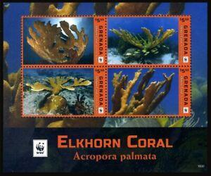 2016 Grenada, Elkhorn Coral, WWF,  souvenir sheet, MNH
