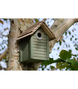 New England Style Wooden Nest Box for small birds such as Blue, Coal & Marsh Tit
