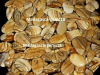 250 CT WHOLESALE LOT TOP QUALITY NATURAL PICTURE JASPER CABOCHON LOOSE GEMSTONE