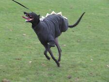 """dog dinosaur jumper fleece coat whippet greyhound 24-26"""" khaki & lemon"""