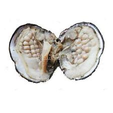 Freshwater Akoya Shell Oysters Oval Wish 22-27PCs Pearl 6-7mm inside Gifts LGJSG