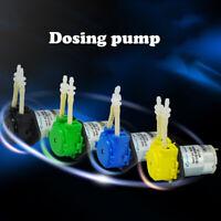 Pompa Peristaltica 12/24V Dosatrice Dosaggio Testa per Lab Acquario Analitico