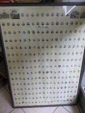 Vecchia stampa dei PAPI SOMMI PONTEFICI ROMANI cronologia ritratti successione